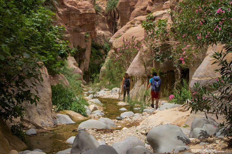 Wadi El Ghuweir