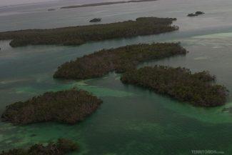 Ilhas de mangue desabitadas