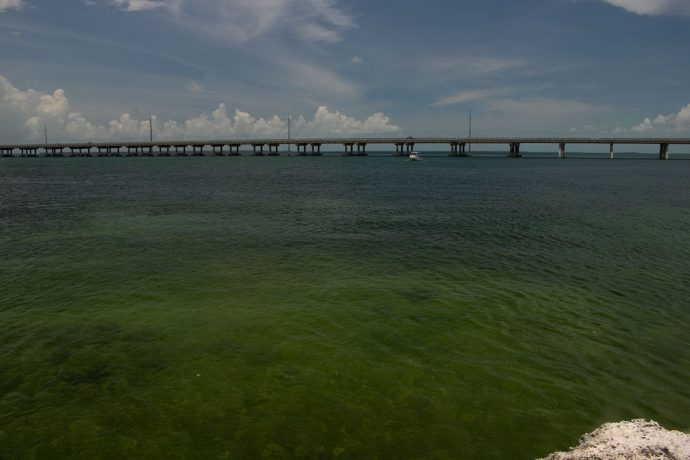 A ponte Seven Mile Bridge