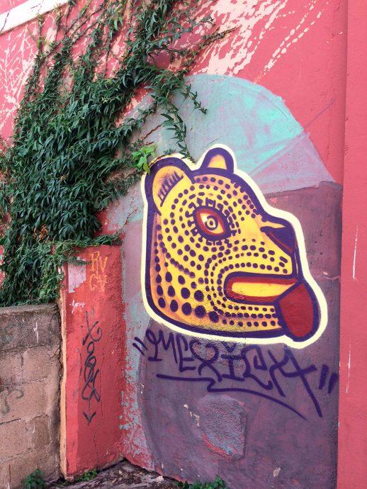Graffiti da Paula Plim