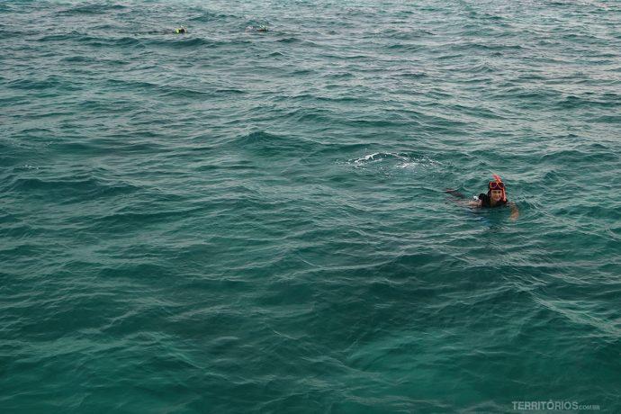 O que fazer em Key West: Snorkel