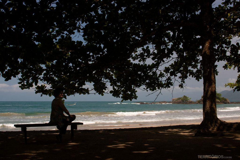 Curtindo a vista na sombra de uma das várias árvores na beira da praia de Castelhanos