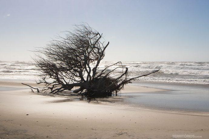Cenário de praia isolada no Rio Grande do Sul