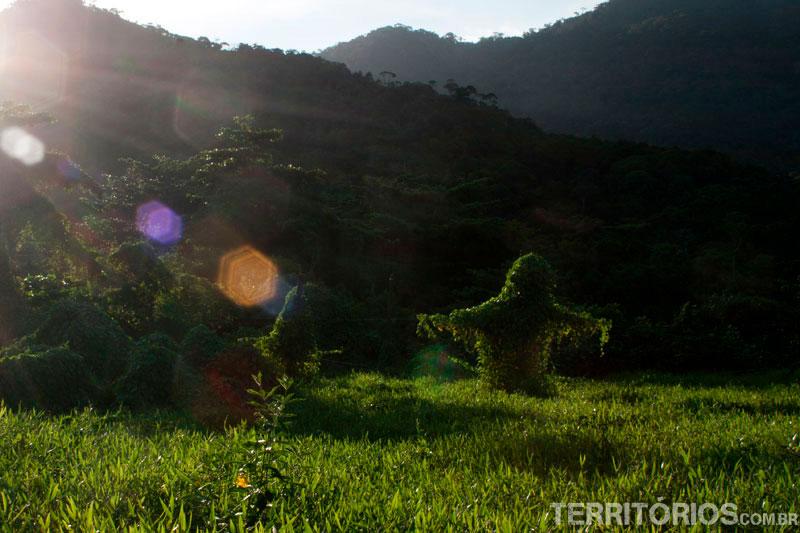 Parque Nacional da Serra da Bocaina, em Trindade