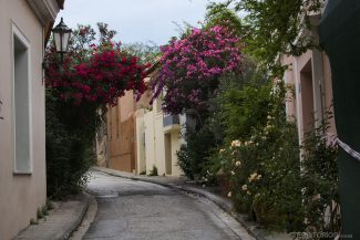 Ruas floridas na primavera