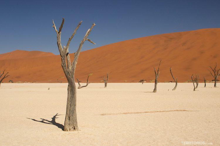 Deadvlei, é paisagem única da Namíbia