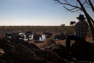 Homem fotografa manada de elefantes no lago em Halali Safari Camp
