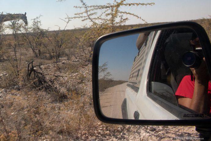 Retrovisor do carro e paisagem da savana africana