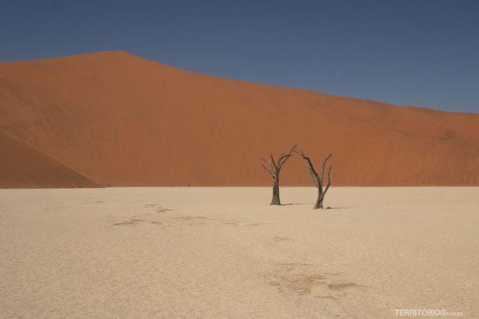 Bid Daddy, a maior duna do mundo fica na Namíbia