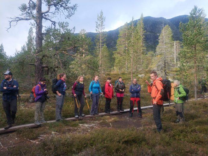Guia conta curiosidades sobre a cultura da Suécia, a natureza ao redor e a história da região