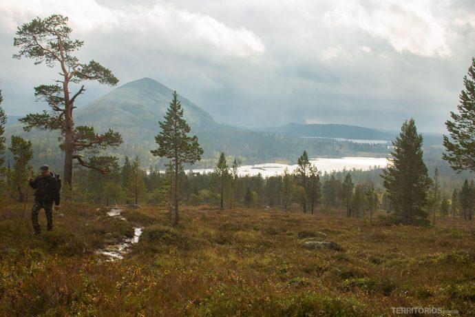 Paisagem em Dalarna